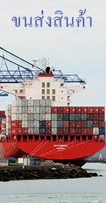 ประกันภัยขนส่งสินค้า ( Cargo )